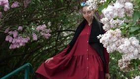一个年轻深色的女孩在有开花的丁香的庭院里走 股票录像
