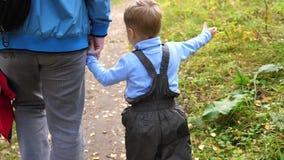 一个年轻父亲在有他的孩子的秋天公园走 父亲握他的儿子` s手 秋天横向 股票视频