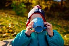 一个年轻男孩从杯子喝在野餐 库存照片