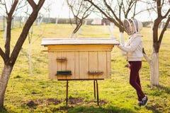 一个年轻蜂农女孩与蜂和蜂箱一起使用在蜂房 免版税图库摄影