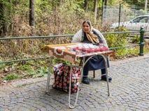 一个年长吉普赛人卖一个莓在入口到公园离Pelesh城堡不远锡纳亚位于罗马尼亚 免版税库存图片