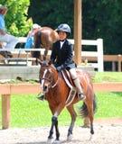 一个幼儿骑在Germantown慈善马展示的一匹马 免版税库存图片