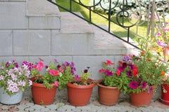 一个庭院的遮荫角落有容器的有很多五颜六色的花 免版税库存图片