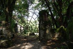 一个庭院的门户以蜘蛛网的形式 库存照片