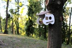 一个异常的鸟舍在森林里 免版税库存照片