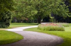 一个弯曲道路在有绿草和鸦片花圃的公园背景的 免版税库存照片