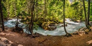 一个弯的一幅全景在雪崩小河流程, GNP的 免版税库存图片