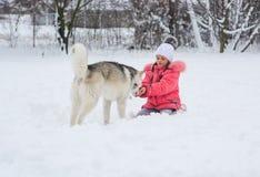 一个微笑的女孩在的乡下喂养一条多壳的狗 免版税库存照片