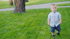 一个快活的孩子跑往在草坪的照相机 手扶的录影 股票录像