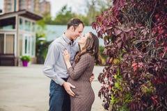一个怀孕的少妇和她的丈夫 站立在红色秋天树篱的一个愉快的家庭,握腹部 放松的孕妇  免版税图库摄影