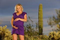 怀孕的白肤金发的模型 免版税图库摄影