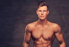 一个性感的赤裸上身的年轻人模型的特写镜头画象与摆在演播室的强健的身体和时髦的理发的 免版税库存照片