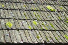 一个恶化的木瓦屋顶 免版税库存照片