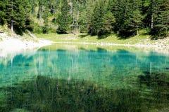 一个惊人的绿色湖在奥地利Hohshwab山 库存图片