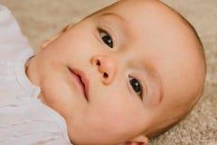 一个愉快和镇静婴孩的画象 免版税库存照片