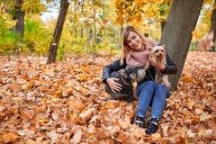 一个愉快的女孩在黄色秋叶坐在公园并且离开她的两小犬座 库存照片
