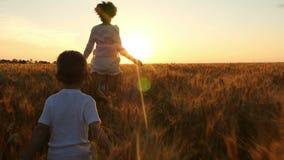 一个愉快的孩子和他的母亲横跨金黄麦子的领域在日落背景的跑 股票录像