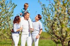 一个愉快的家庭在庭院里在春天,在夏天 免版税图库摄影