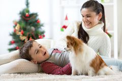 一个愉快的母亲和她的小儿子的画象有在家一起花费圣诞节时间的狗的在x-mas树附近 免版税库存图片