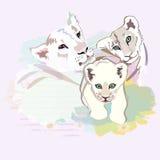 一个愉快的狮子家庭的抽象水彩例证 库存图片