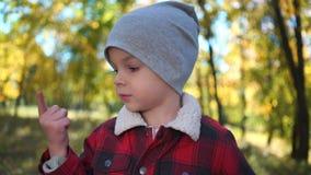 一个愉快的男孩的画象秋天公园的 股票录像