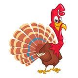 一个愉快的逗人喜爱的感恩火鸡字符的动画片例证 免版税库存图片