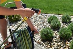 一个成人人在绿色庭院里浇灌不同的植物 免版税库存图片