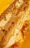 一个成熟南瓜的细节 免版税图库摄影
