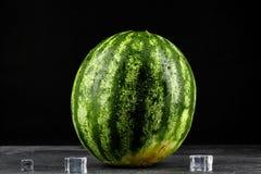 一个成熟圆的深绿西瓜的特写镜头与冰一些个立方体的,在黑背景 自然有机夏天莓果 库存图片