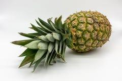 一个成熟水多和新鲜的菠萝 免版税库存照片