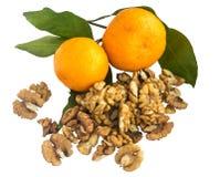 一个成熟蜜桔的分支与被隔绝的绿色叶子的 免版税库存照片
