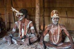 一个战士Asmat部落的画象在传统头饰的 免版税库存图片