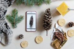 一个手机和杉木锥体的顶视图 冬天心情 平的位置 库存图片