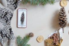 一个手机和杉木锥体的顶视图 冬天心情 平的位置 免版税库存照片