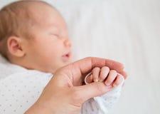 一个新出生的婴孩的特写镜头手 免版税库存照片