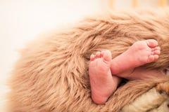 一个新出生的婴孩的腿 免版税图库摄影