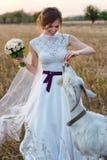 一个新娘的画象喂养一只山羊并且笑的婚礼礼服的 免版税库存照片
