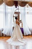 一个新娘的画象一件礼服的有一列长的火车的 库存照片