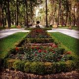 一个新的公园在Irpen,乌克兰 免版税库存图片