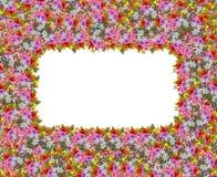 一个方形的花框架例证 库存图片