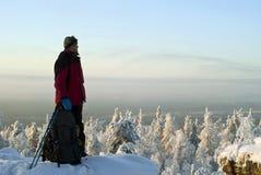 一个旅客在它上面冬天山敬佩风景 免版税库存图片