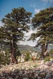一个旅客的女性剪影Lycian足迹的对Tahtali 免版税库存图片