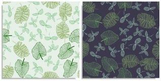 一个无缝的样式的传染媒介套与密林,夏天叶子小树枝的  手拉在板料在图表样式 线, 免版税库存照片