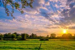 一个早晨在英国国家边的一个农场设置了 免版税库存图片