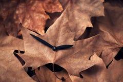 一个时钟的手在一片干燥叶子的, 免版税库存图片
