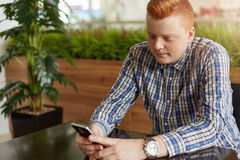 一个时髦的红头发人人在控制中坐在舒适餐馆的衬衣穿戴了在绿色棕榈树附近使用智能手机观看的interesti 库存图片