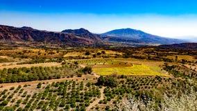一个有山的领域和农田的鸟瞰图与果树的在背景中 免版税库存照片