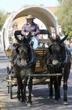 一个有盖货车、骡子队和司机 免版税库存图片