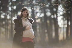 一个有薄雾的冬天风景的怀孕的少妇 免版税库存图片