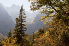 一个有薄雾的高山谷的风景风景视图 库存图片